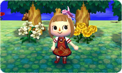 Animal Crossing: New Leaf Character